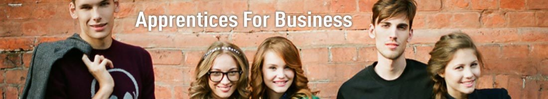 Apprentices For Business